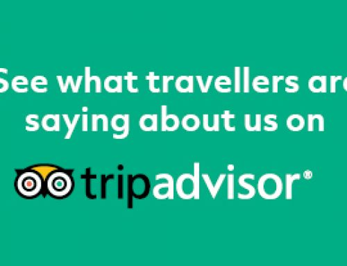 Check out our amazing trip advisor reviews